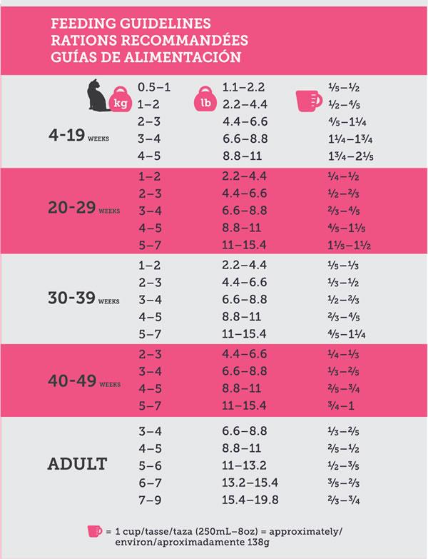 north-paw-cat-all-life-feeding-guide.jpg