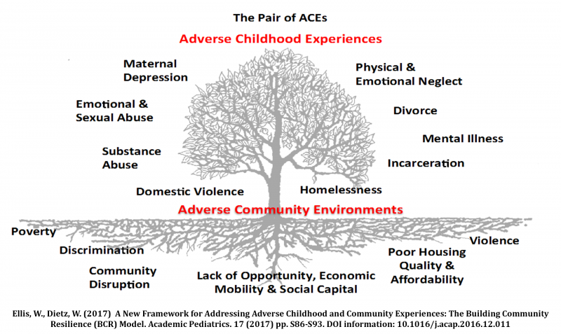 Pair of ACEs Tree.png