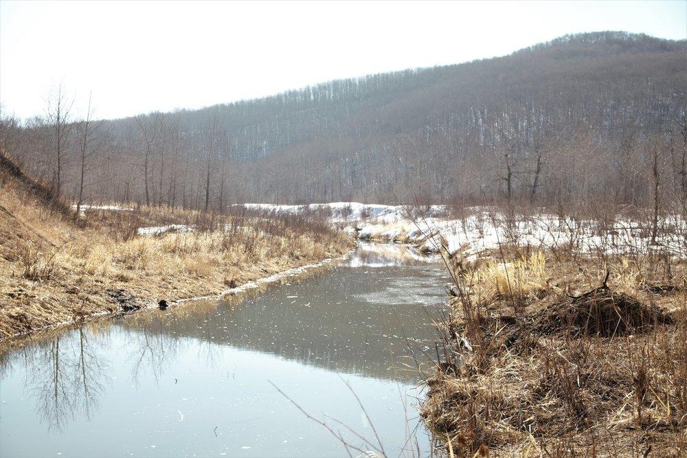 creek+spring+beaver+pool.jpg