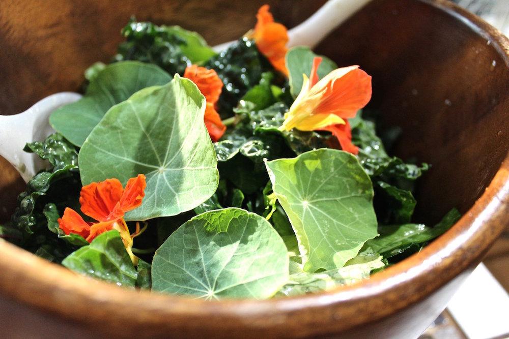 Gourmet_Local_Salad.jpg