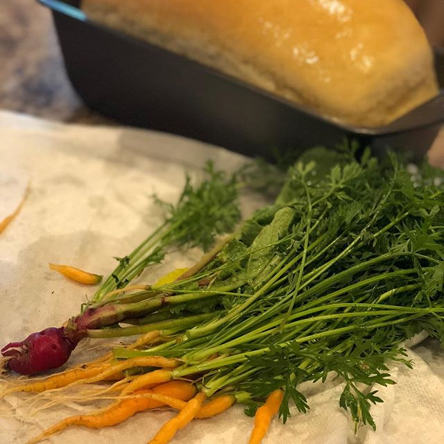 Carrots straight from the garden - and some bread made from scratch! Nice little Monday summer night! #garden #baking