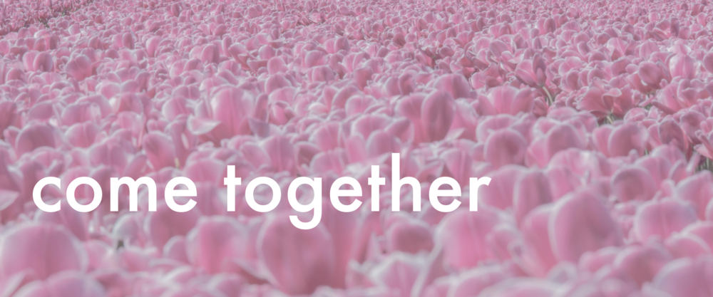 5_come together_website category graphics DPv2 copy.010.png