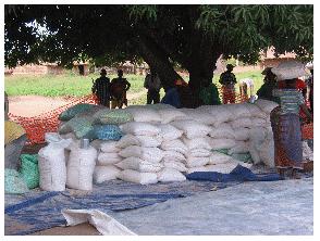 mozambique-relief-2007 (6).png