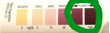 fasting ketosis test strips