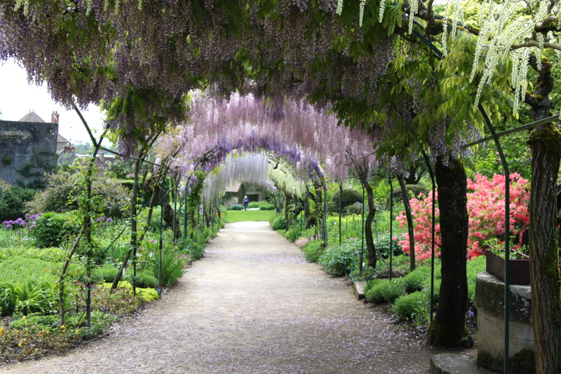 A wisteria covered arbor at the gardens in Apremont, France