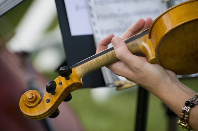 Wedding and Event Musician