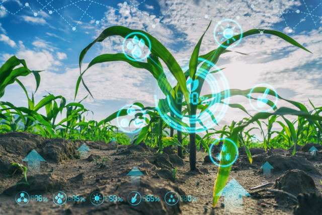 Agricultural Supply Chain on Pace with Blockchain   Successful Farming  22 January 2019
