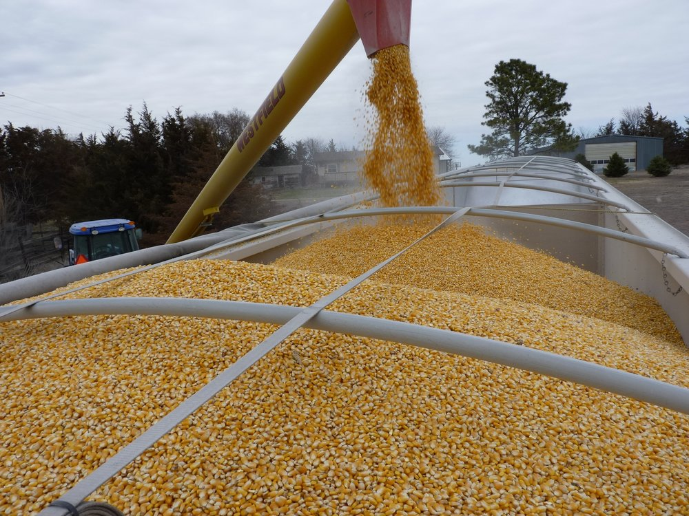 A blockchain trade a first ever in the grain trade   1 February 2019