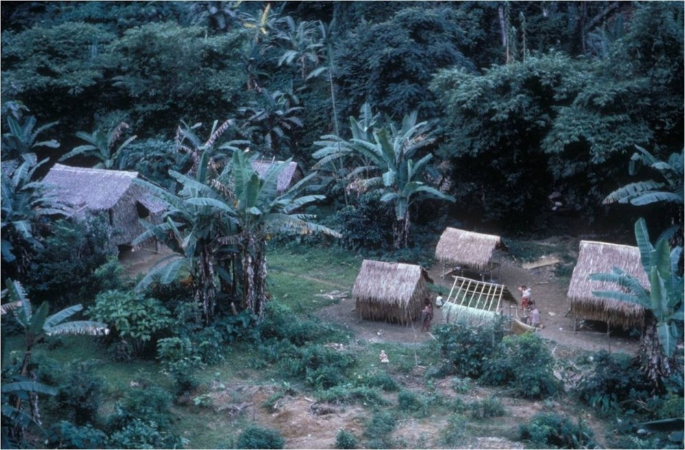 I grew up in the Cozo village. At that time Agta villages were usually less than four or five houses...