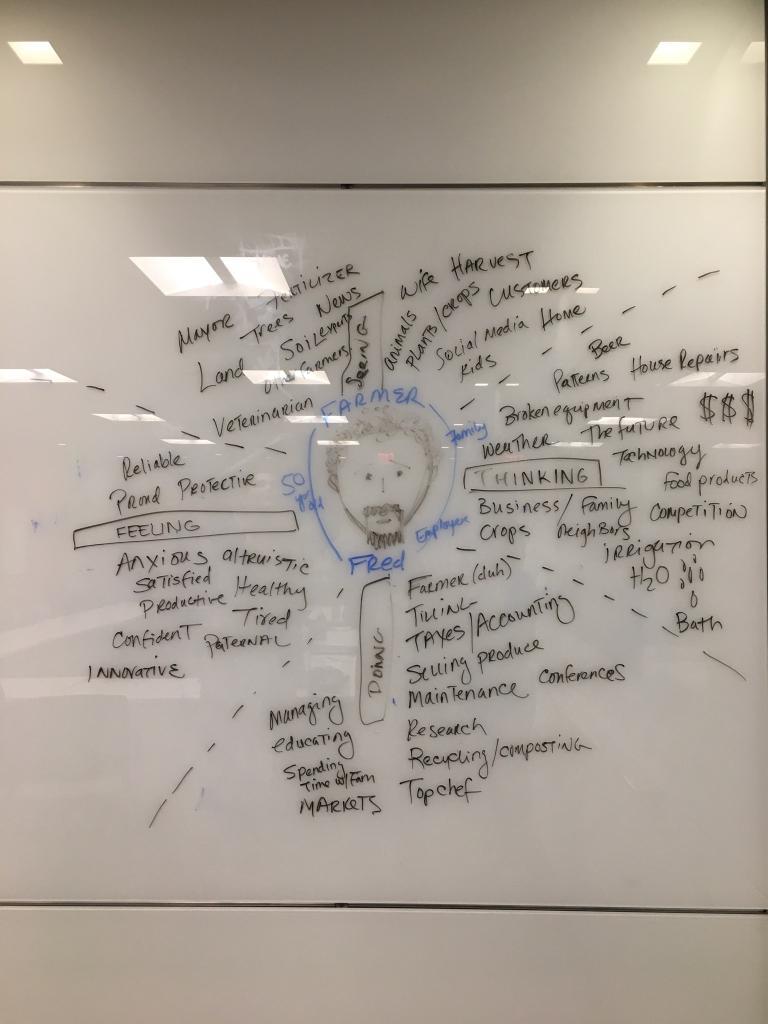 Empathy mapping of a farmer - This contributed to our Anna persona, listed below.