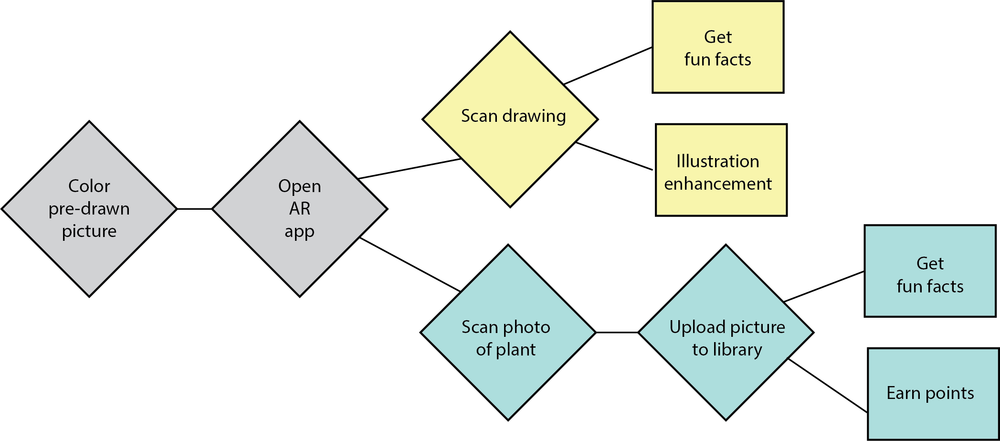 "AR user flow - This is a theoretical approach to our supplementary AR component. An app would be downloaded onto a smart phone or tablet to scan pictures and upload photos. Scan pictures would lead to additional factoids and games involving the specific fruit or veggies. Uploading photos can ""unlock"" levels or points for users (primarily the students) as motivation to continue working on their gardening skills."