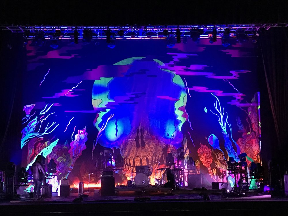 The Shins   Scrim applique and backdrop during performance on 2017-2018  Heartworms  tour