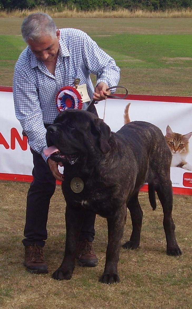 Dog CC winner.JPG