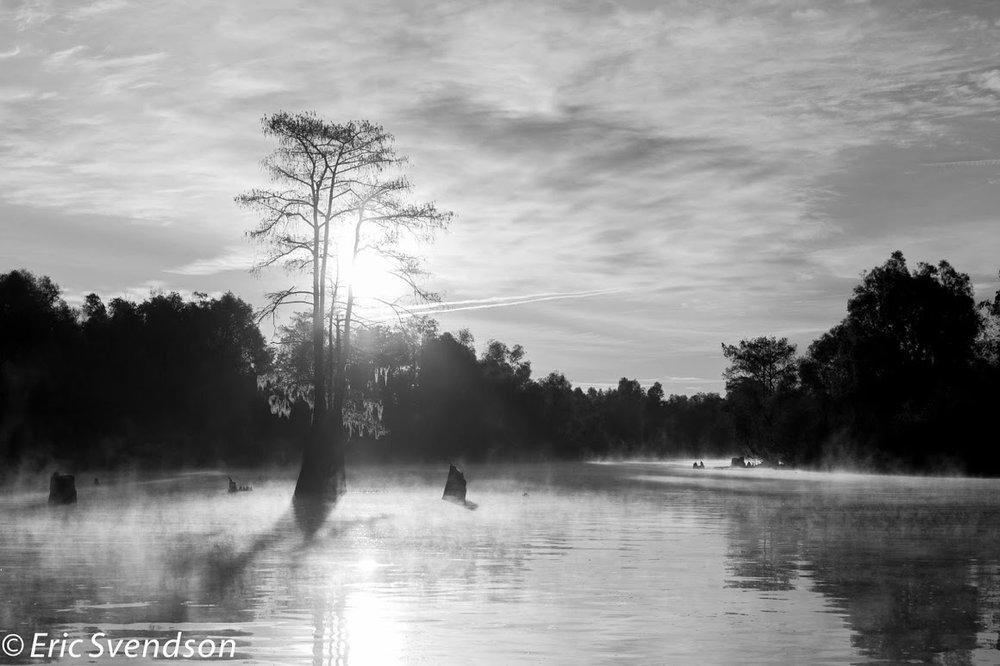 swamp-snaps-2016-015.jpg
