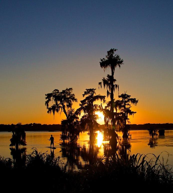 swamp-snaps-2016-051.jpg