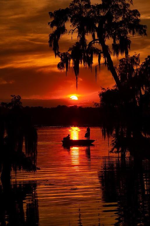 swamp-snaps-2016-060.jpg