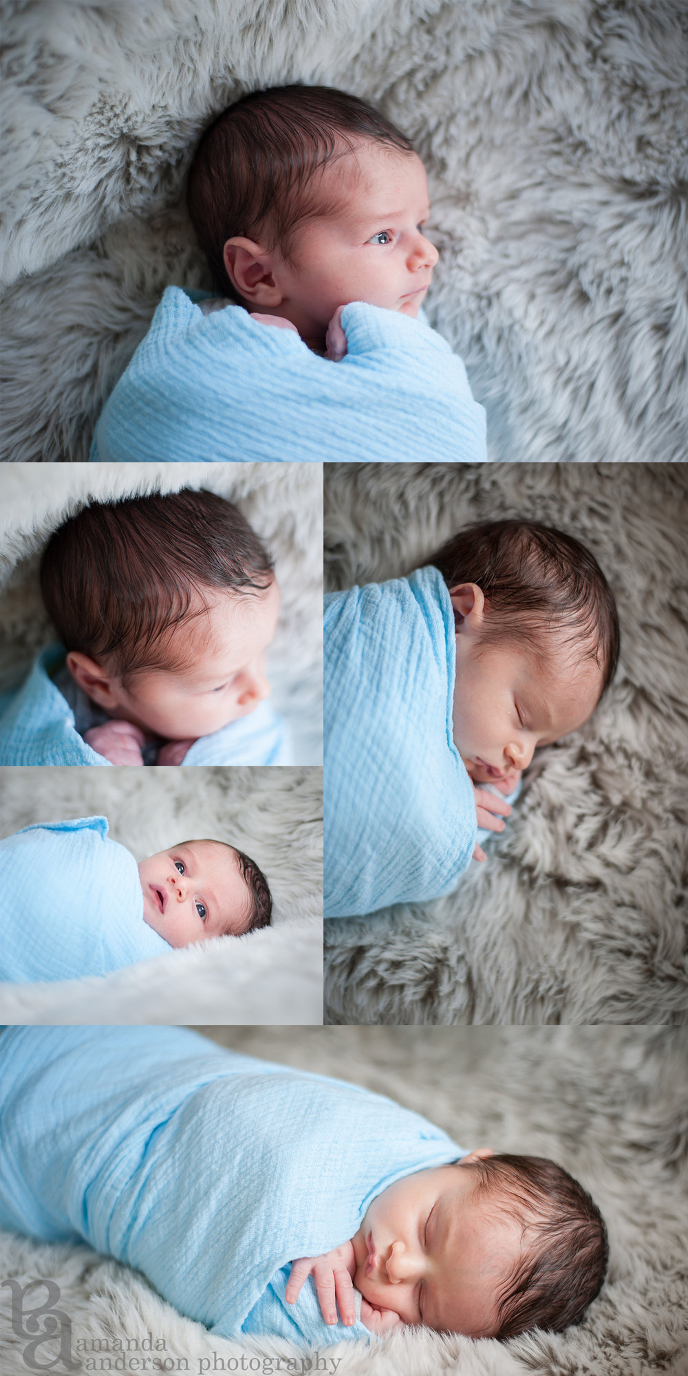 Newborn Baby Boy San Francisco