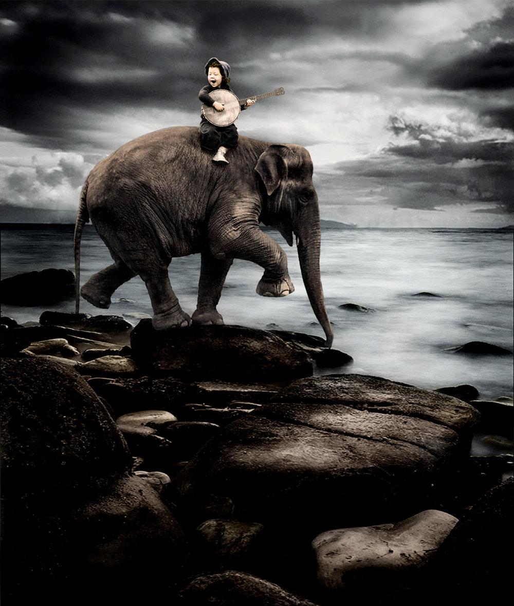Elephant Song.jpg