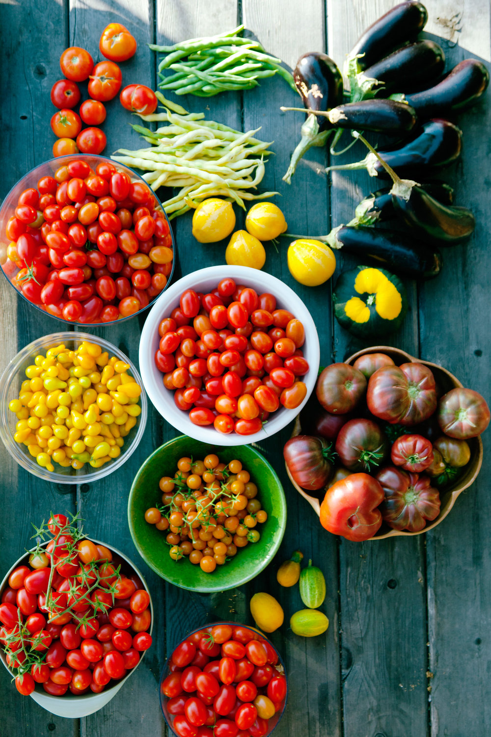 choosing your tomatoes