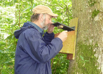 Keeping track of the bird population in our own woods
