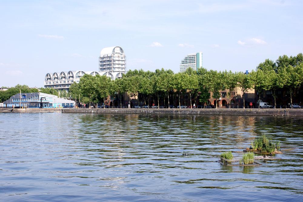 Extra Dock Pic.jpg