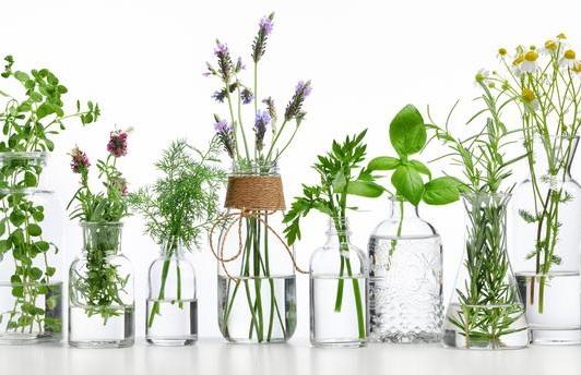 Bienfaits des huiles essentielles en massage - Naturopathie Massothérapie Zeina Raya