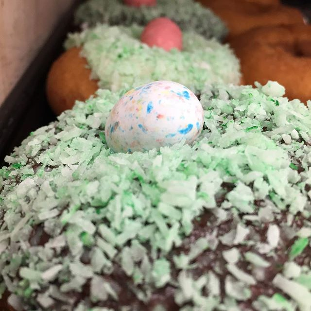 Looks like Easter came early at Red Coach Donuts! Try our new spring special cake donuts!  #donuts #redcoachdonuts #stevensville #michigan #cake #pastries #easter #easterrabbit #easteregg #coconut #maltedmilkballs #coffee