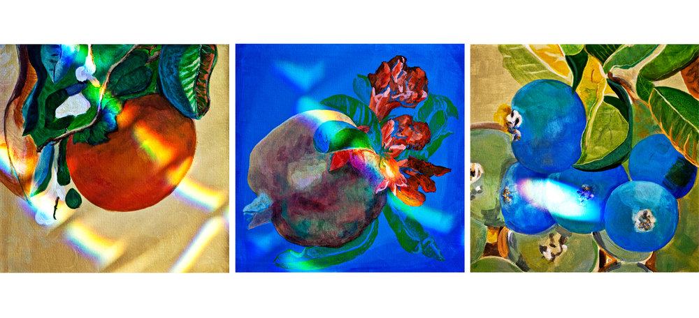Exhibition_Inmortality.jpg