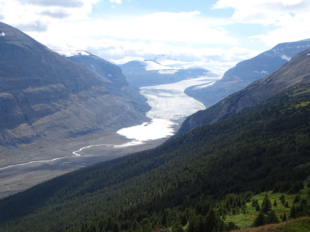 The Saskatchewan Glacier - sad to see just how much the glaciers have been melting. It used to flow past where the photo ends on the left.
