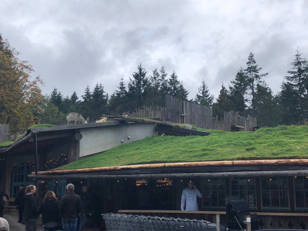 Goats on The Roof Market
