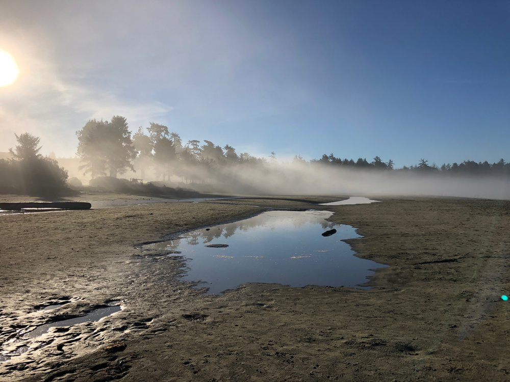 On our first morning, I drank coffee while playing Uno with Isla on the beach. I loved the misty mornings!
