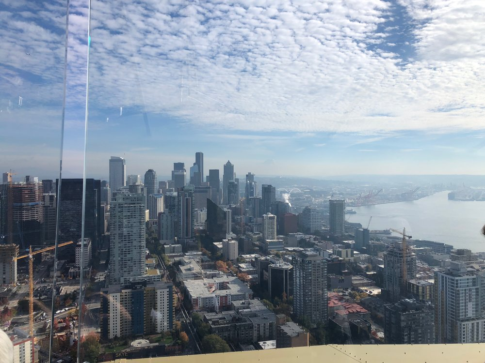 Just one of the great views from the Space Needle