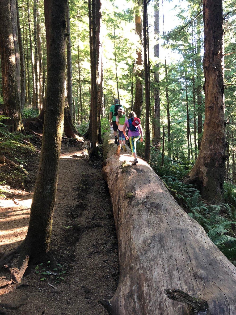 Hiking the Neahkanie Trail