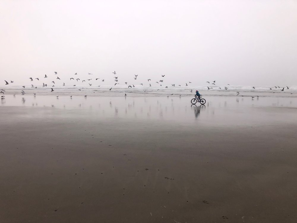 Isla and riding with birds