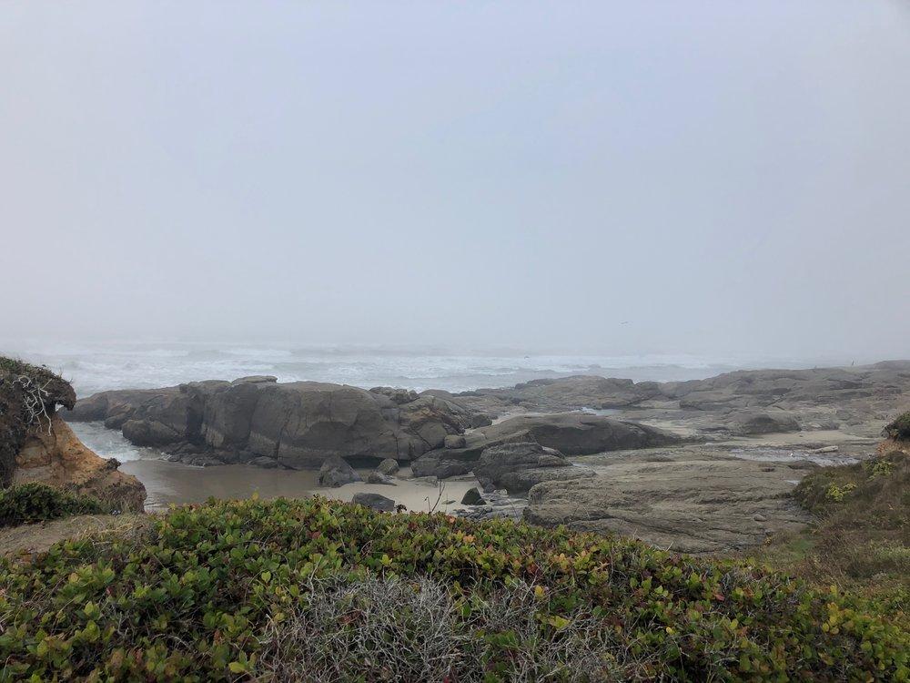 Along the Oregon Coast Trail