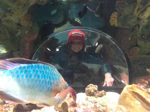 Isla at the aquarium
