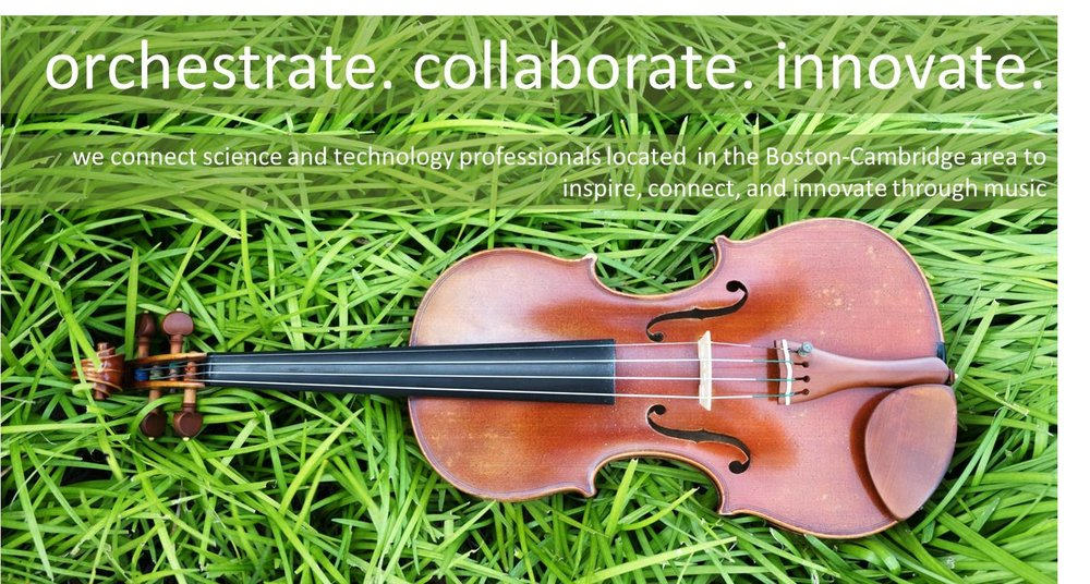 violin on grass tag line inverse.jpg