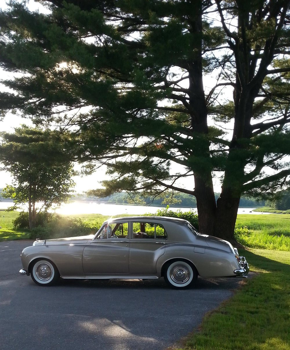 bentley from maine limousine parked under tree