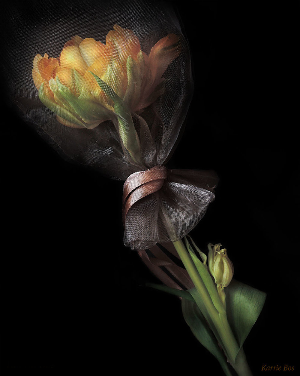 Flower in a Bag 1080 x 1350.jpg
