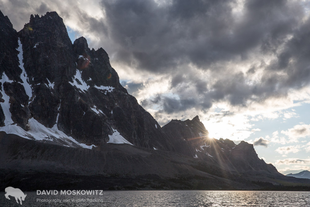 Sunset in the Tonquin Valley, home of the largest, though diminishing herd of mountain caribou in Jasper National Park, Alberta.
