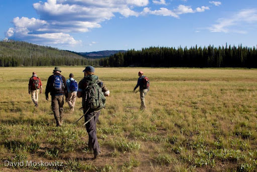 Students in Wilderness Awareness School's Idaho Wolf Tracking Expedition hiking out across Corduroy meadows at the southern end of the Frank Church River of No Return Wilderness towards the end of a long day in the field searching for and following wolf tracks and signs.