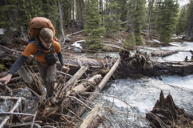 Crossing the upper Imnaha river on a log jam in the Eagle Cap Wilderness, Oregon.