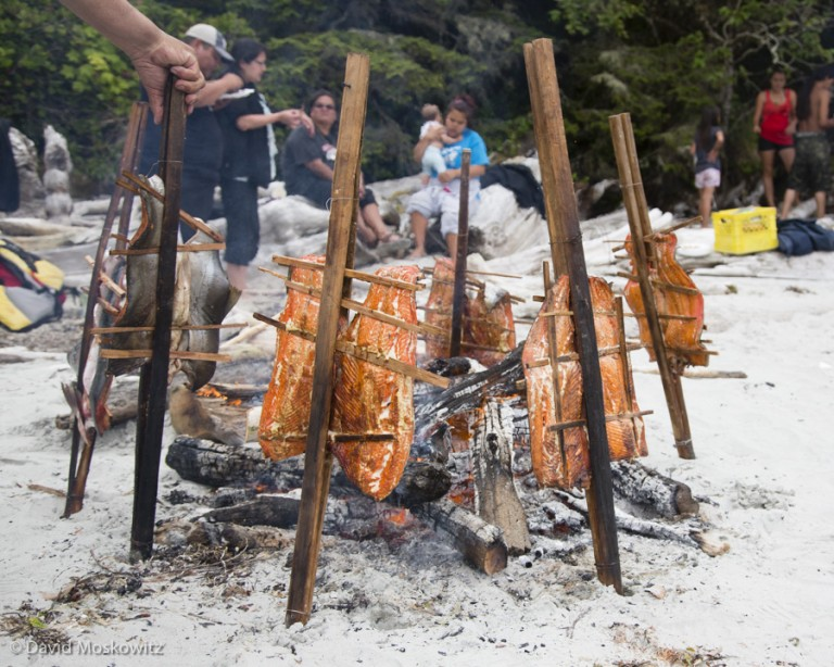 Salmon cooking over an open fire in a traditional methods using split cedar to secure the fish.