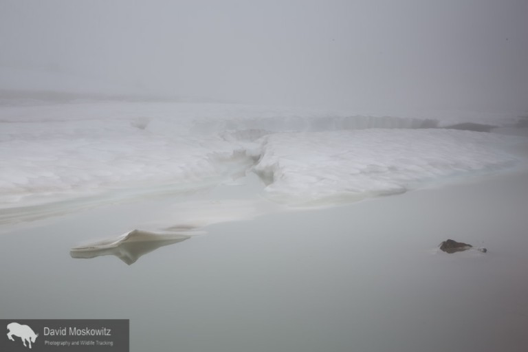 Earth, sky and water merge with a heavy fog sitting over the snow and ice choked glacial lake.