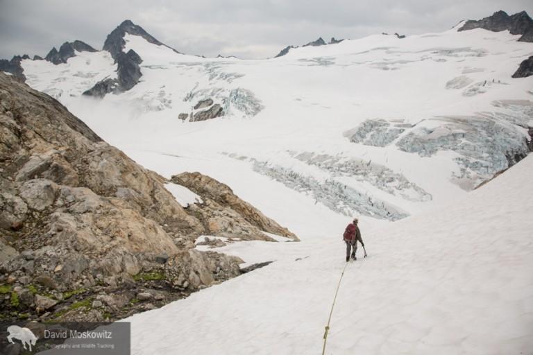 Darcy Ottey descending onto the Neve Glacier as a cloud rols over the glacier.