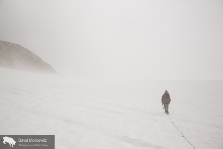 Heading into a cloud on the glacier.