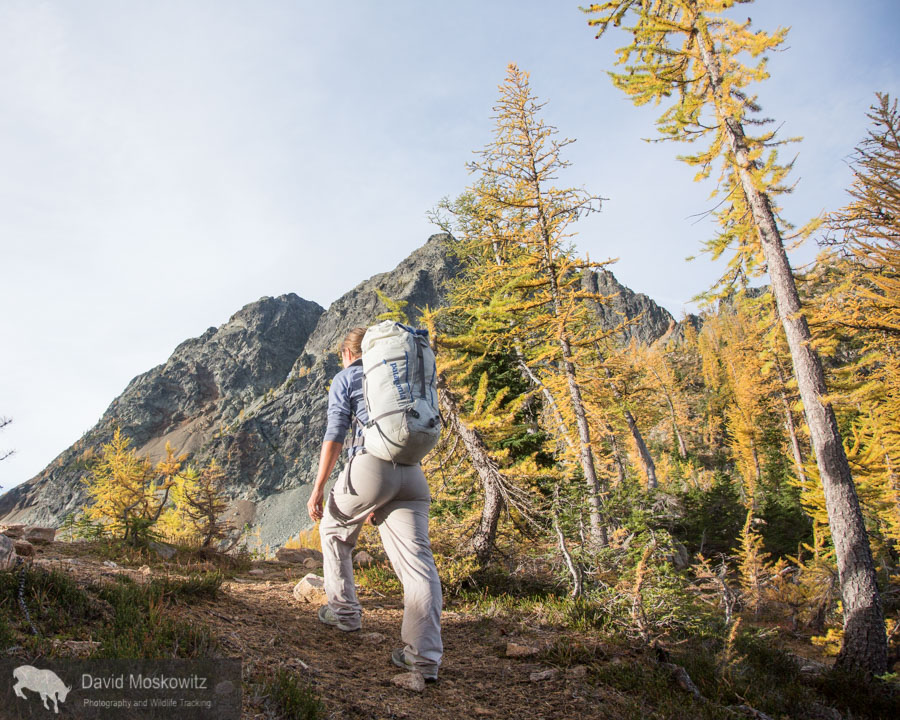 Darcy Ottey on a fall outing in the North Cascades of Washington.