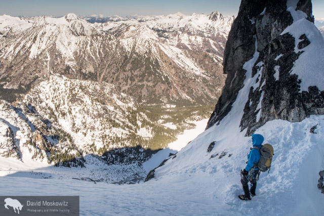 Close to the summit of the Triple Couloirs on Dragontail Peak, Cam Alford looks out over the snow covered North Cascades.