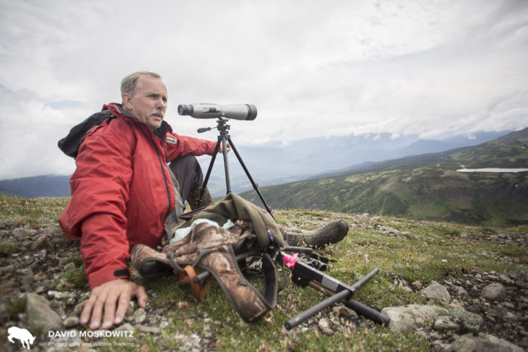 Brian Pate, biologist for Wildlife Infometrics uses a spotting scope to search for caribou and other wildlife in the Hart Range.