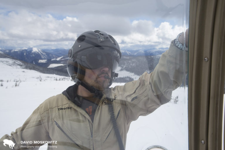 Helicopter pilot Timothy Seabrook removing the door to his aircraft in the Hart Range.